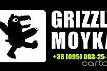 GRIZZLY_MOYKA